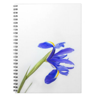 Purple Iris Flower Notebook