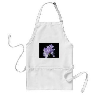 Purple Iris Flower On Black Background Standard Apron