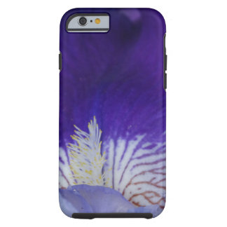 Purple Iris Flower Photo iPhone 6/6s, Tough Tough iPhone 6 Case