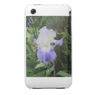 Purple Iris iPhone 3 Cases