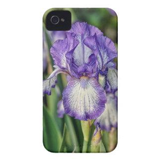 Purple Iris iPhone 4 Cases