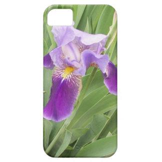 Purple Iris iPhone 5 Cases