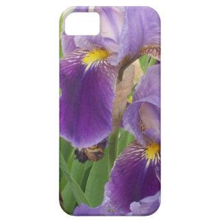 Purple Iris iPhone 5 Cover