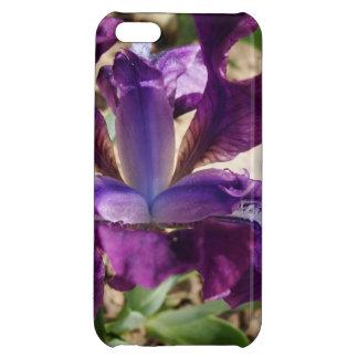 Purple Iris iPhone 5C Cover