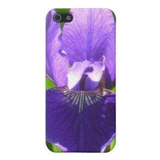 Purple Iris iPhone 5/5S Covers