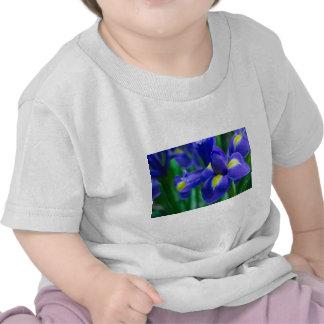 purple Iris.jpg Tshirt
