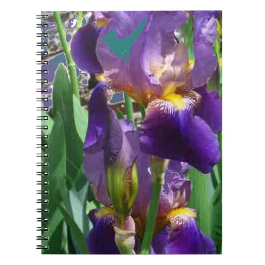 Purple Iris Notebook