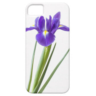Purple iris on iphone case
