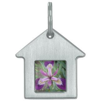 Purple Iris Pet Tag