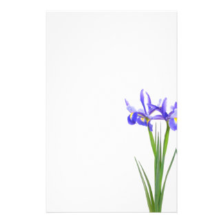Purple Iris Stationery