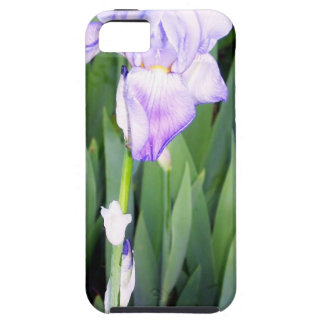 purple iris with the moring dew iPhone 5 cases