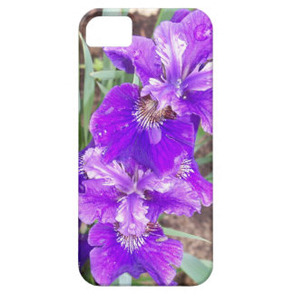 Purple Iris with Water Droplets iPhone 5 Case