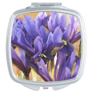 Purple Irises Compact Mirror