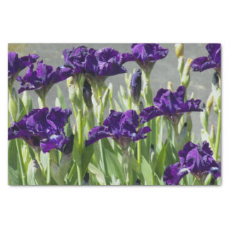 Purple Irises Floral Tissue Paper