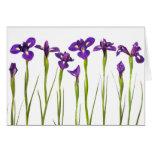 Purple Irises - Iris Flower Customised Template Note Card