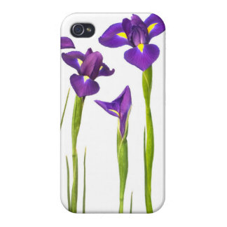 Purple Irises - Iris Flower Customized Template iPhone 4/4S Covers