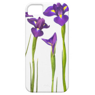 Purple Irises - Iris Flower Customized Template iPhone 5 Case