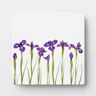 Purple Irises - Iris Flower Customized Template Plaque