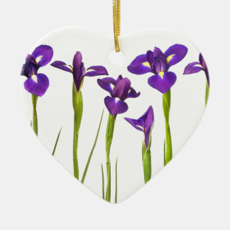 Purple irises isolated on a white background christmas ornament