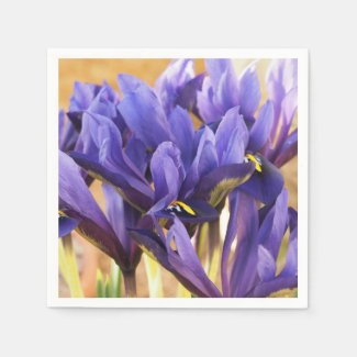 Purple Irises Paper Napkins