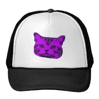 Purple Kitty Cap