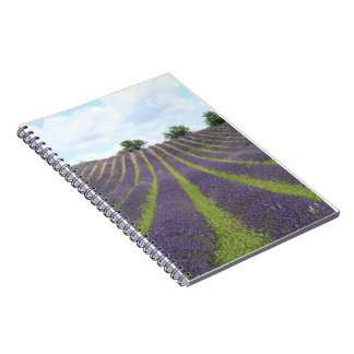 Purple lavender fields near Sault Notebooks