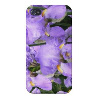 Purple lavender lavander blue iris iPhone Case iPhone 4/4S Covers