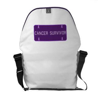 Purple License Plate Survivor Courier Bag