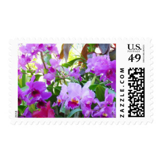 Purple Lilies Flowers Postage Stamp