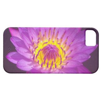 Purple Lotus Flower iPhone 5 Cover