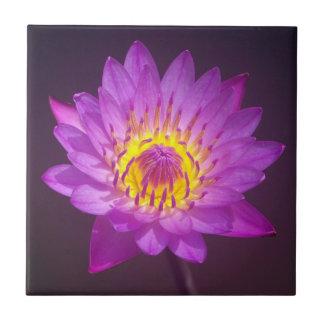 Purple Lotus Flower Small Square Tile