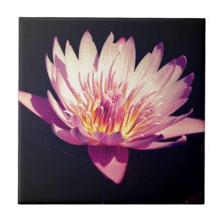 Purple Lotus Flower Ceramic Tile