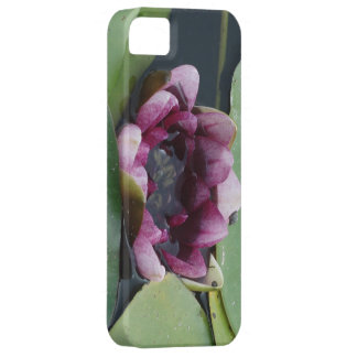 Purple Lotus Photo iPhone SE + iPhone 5/5S iPhone 5 Covers
