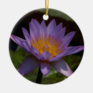 Purple Lotus Waterlily Christmas Ornament