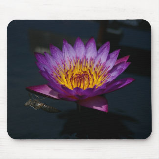 Purple Lotus Waterlily dragonfly nymph mouse pad