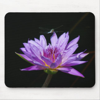Purple Lotus Waterlily Dragonfly Playing Cards Mouse Mat