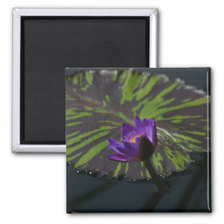 Purple Lotus Waterlily Lily Pad Magnet