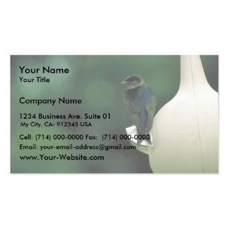 Purple martin pack of standard business cards