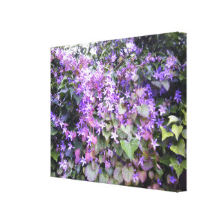 Purple / Mauve Flower Photo Canvas