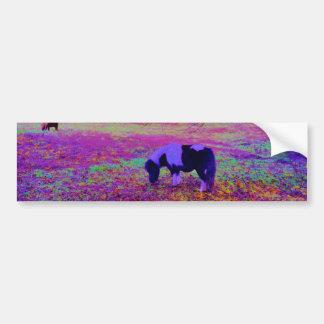 Purple miniature horse bumper sticker