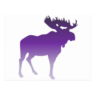 Purple Moose Postcard