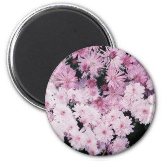 purple mums magnet
