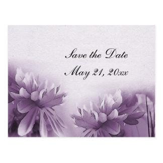 Purple Mums Postcard - Save the Date