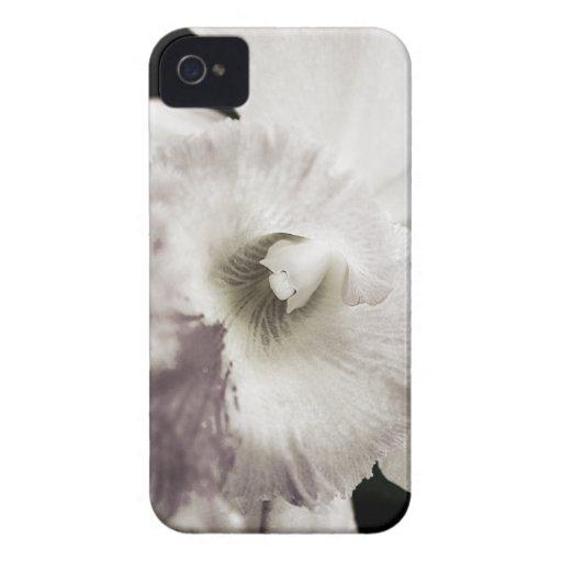 Purple Orchid Blackberry Case