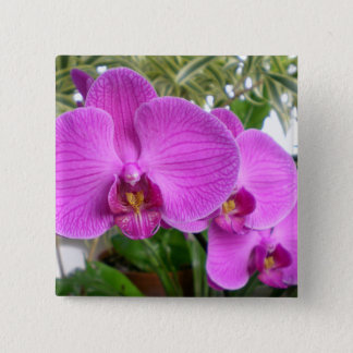 Purple Orchid Button