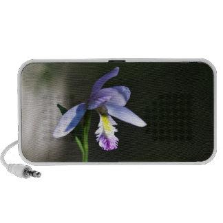 Purple Orchid Doodle Speaker