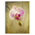 Purple Orchid Floral Flower Aged Antique Notebook