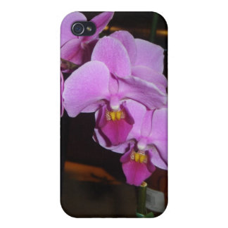 Purple Orchid iPhone 4/4S Cover