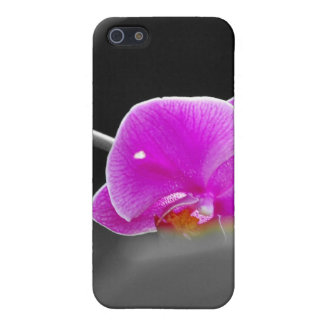 purple orchid iPhone 5 covers