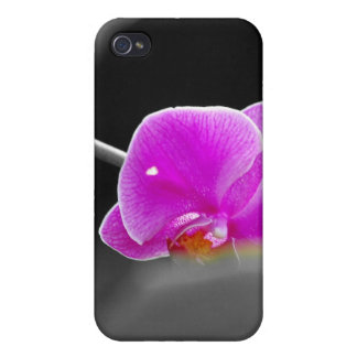 purple orchid iPhone 4/4S cases